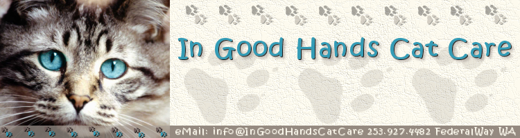 (c) In Good Hands Cat Care